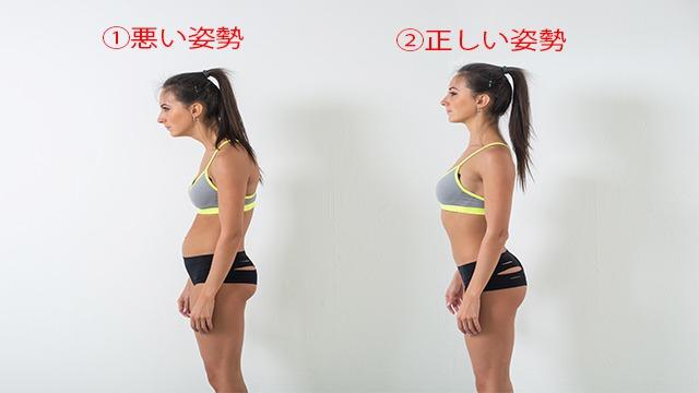 背骨と姿勢の関係